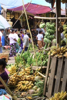 Bananas for both eating for offering
