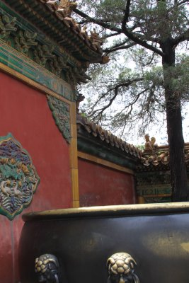 The gardens of the Forbidden Palace