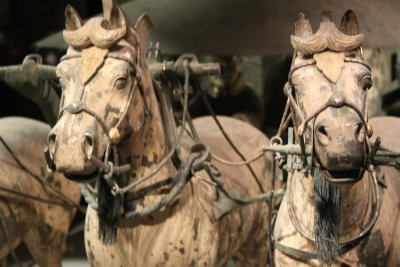 Horses with bronze head gear