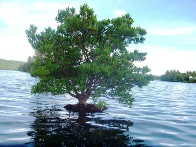 Climata Changes, Lake Tegano