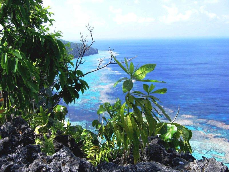 Tuhugago Cliff top/Rennell Island