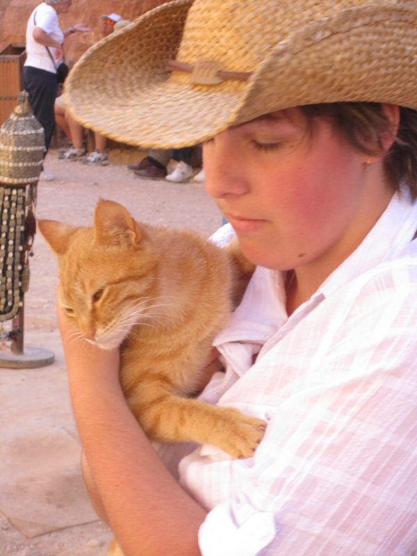 Cats of Petra