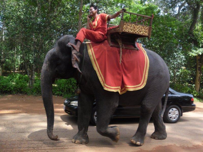 Elephant leaving Angkor Thom