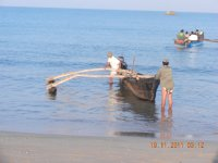fishing boat for dolphin watching