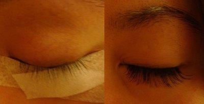 eyelash_extensions.jpg