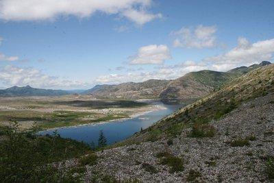 The Landslide Area