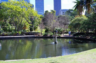 A lake at the Botanical Gardens.