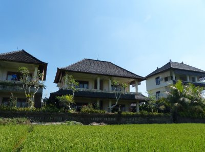 Permana Cottages - from the rice field
