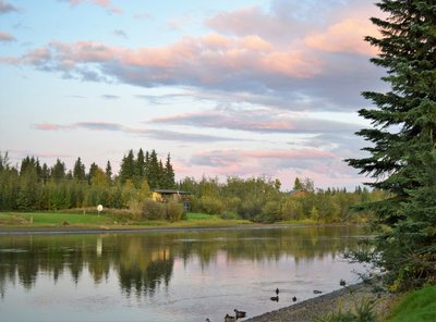 The view of the Chena River from our campsite