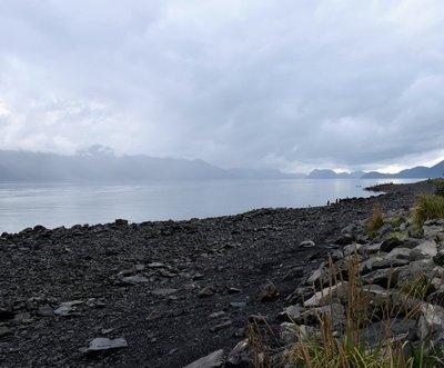 Seward Shoreline