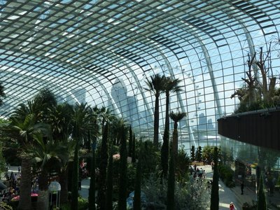 Gardens on the Bay - Flower Dome
