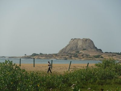 The Beach off Yala