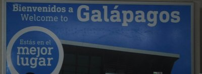 Welcome to the Galapagos