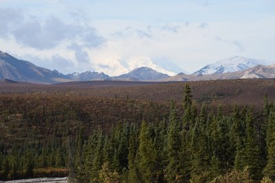 Our 1st view of Denali
