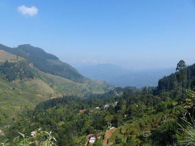 View from the train to Nuwara Eliya
