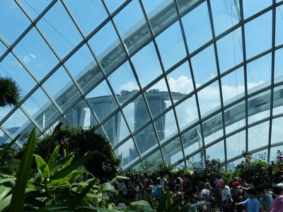 Marina Sands Hotel from inside the Flower Dome