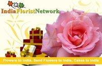Enliven the celebration spirit for Rakhi with us