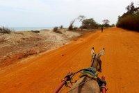 Transport by donkey cart