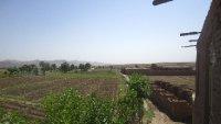 Karokh Fields