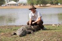 Petting croc