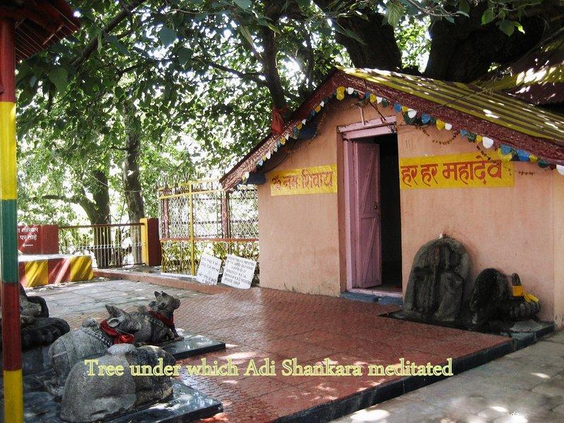 large_30-Kalpavr..imath_14130.jpg