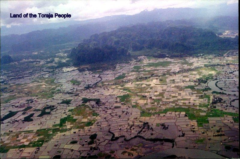large_Sulawesi_I.._Scan__104_.jpg