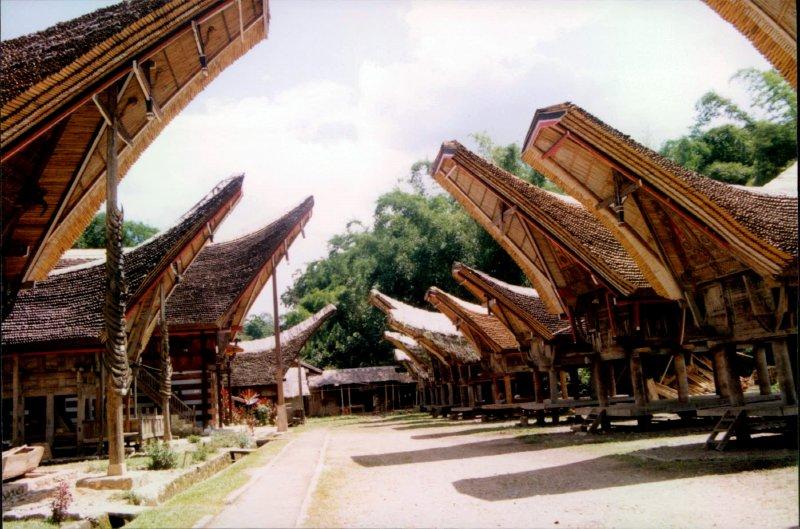 large_Sulawesi_I.._Scan__157_.jpg