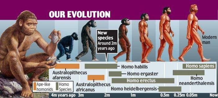 large_our-evolut..imeline-jpg.jpg