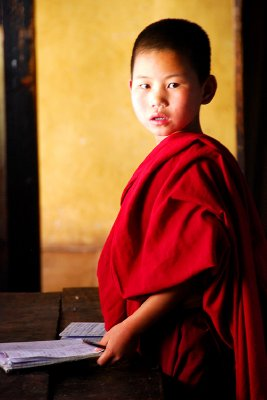 Monk studying at Chimi Lhakhang fertility temple, Wangdue