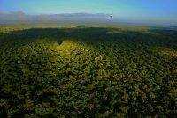Balloon safari in South Afirca