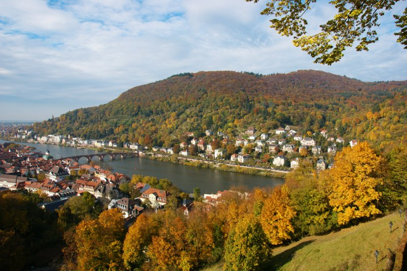 View of Heidelberg and the river Neckar from the castle gardens, Germany