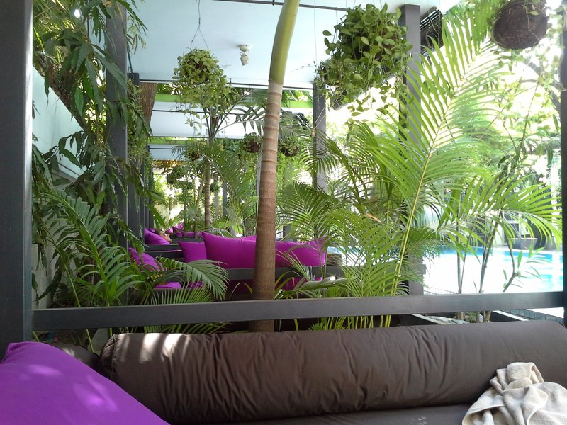 Chilling area by the pool