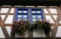 Picture perfect windows