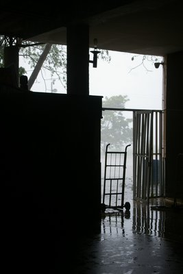 Torrential rain at the bus station before we left to Taganga.