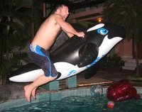 Free Willy!