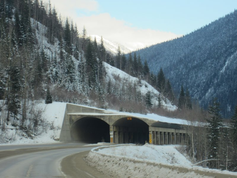 Snow sheds in the Rocky Mountains