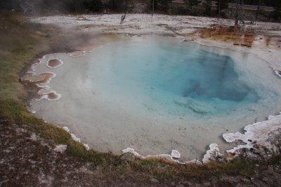 Yellowstone 224