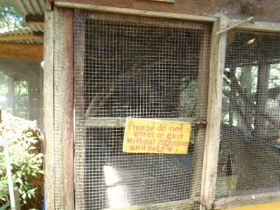 Rocky's Cage