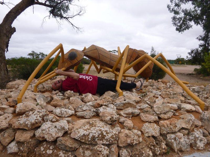 large_Big_Ant_-_Poochera_SA.jpg
