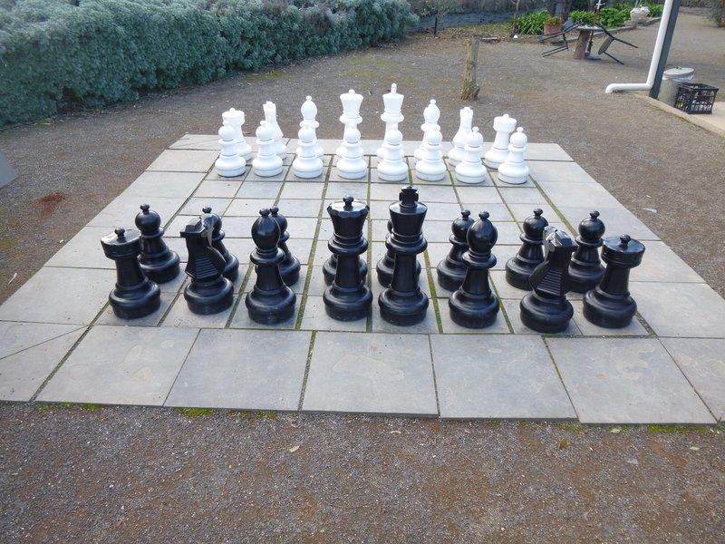 large_Big_Chess_.._-_Clare_SA.jpg