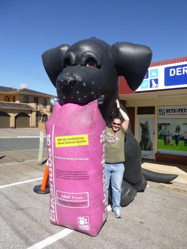 large_Big_Dog_-_Dernancourt.jpg