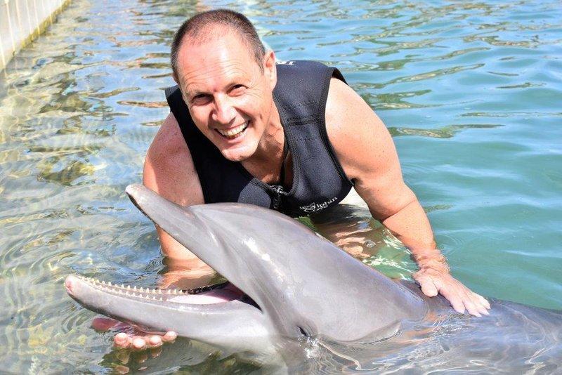large_Dolphins__47_.jpg