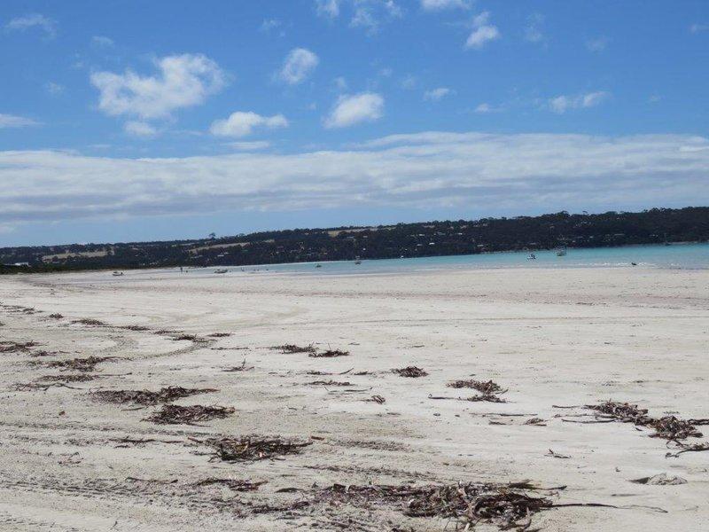 large_Island_Beach__4_.jpg