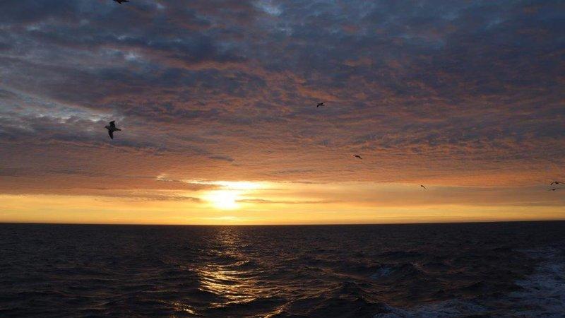 large_Midnight_S..eenland_Sea.jpg