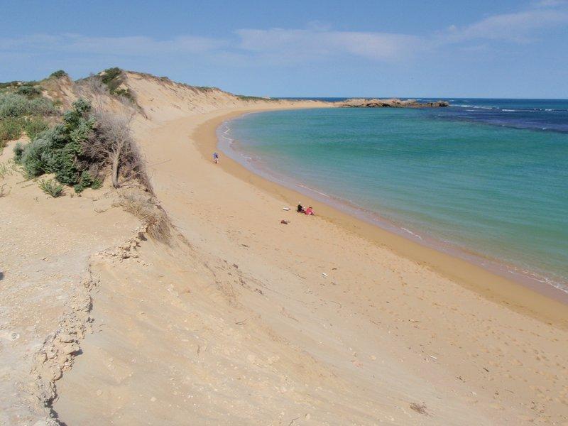 large_Scenic_Drive_-_Beachport.jpg