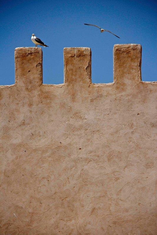 Essaouira old city wall
