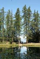 Lac du Lauzerot 2