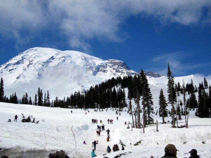 Mount Rainier National Park - Paradise