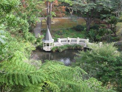 5-15 (19) Wellington Botanical Gardens