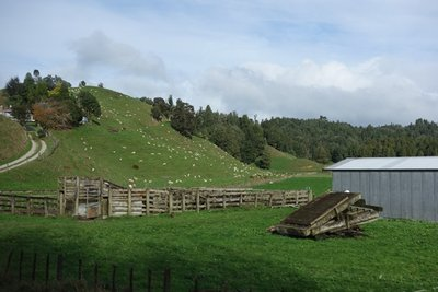 5-19r (7) Auckland farm land